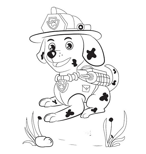 Coloring Pages Of Marshall From Paw Patrol : Paw patrol coloring pages marshall imgkid the